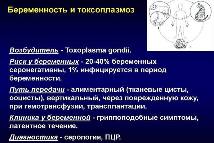 Анализ крови на гормоны щитовидной железы. анализ крови на гормоны минск | биомедика