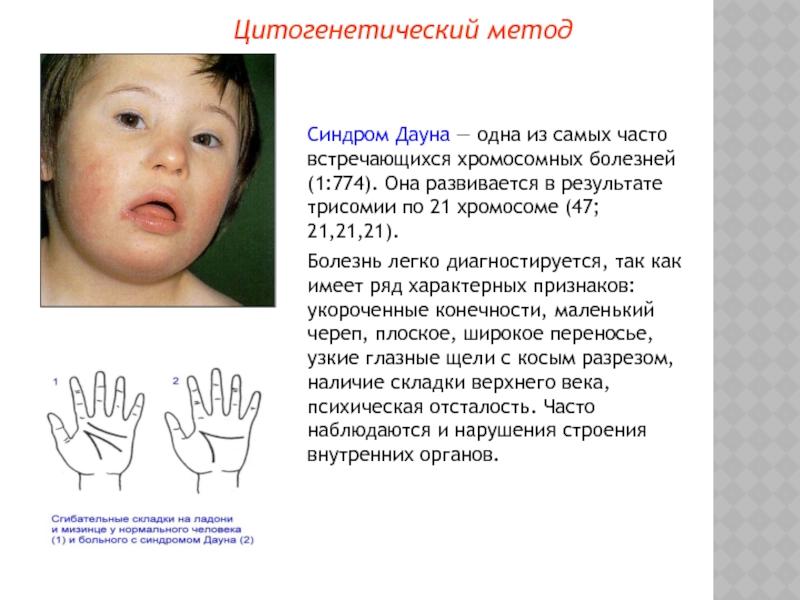 """Краевой реабилитационный центр для детей и подростков с ограниченными возможностями """"журавлики"""""""
