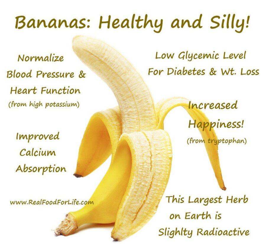 С чего начать первый фруктовый прикорм и какие фрукты давать в ниблере