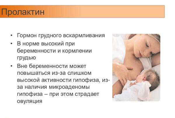 Лактация и контрацепция – защищает ли грудное вскармливание от беременности?