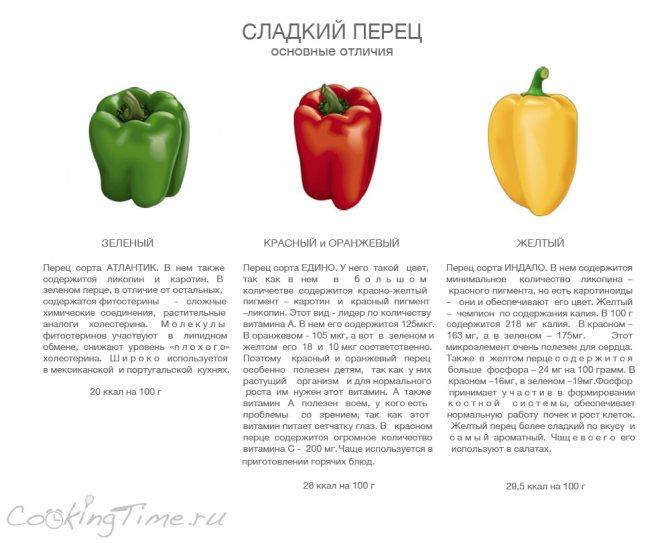 Болгарский перец: польза и вред, состав, свойства
