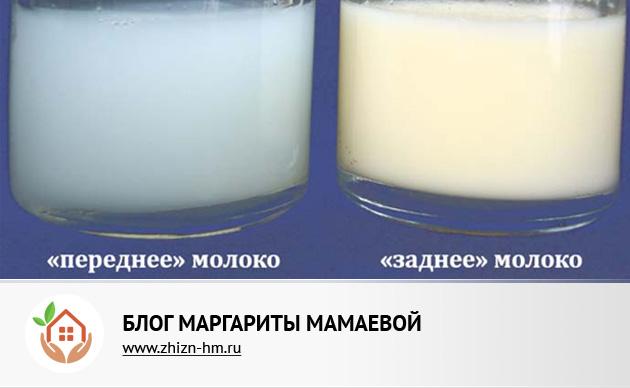 Подтекание молока во время кормления. что делать, если из груди подтекает молоко? почему течет молоко