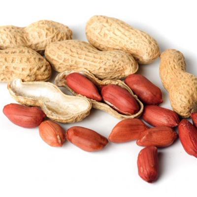 Соленый арахис при гв: можно ли его кормящей маме