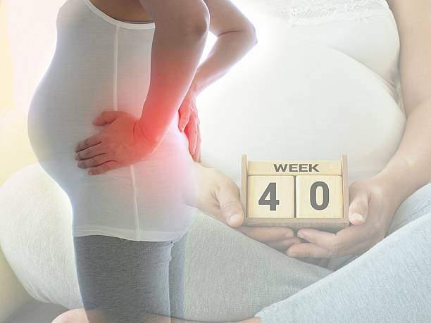 40 недель беременности — роды, плод, вес, живот, выделения, узи