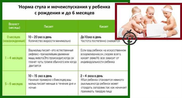 Сколько раз должен какать новорожденный
