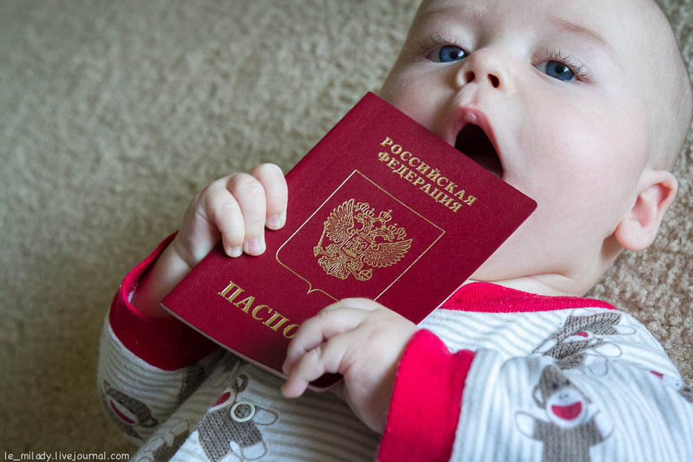 Как прописать ребёнка: основные правила и нюансы временной и постоянной регистрации новорождённых детей