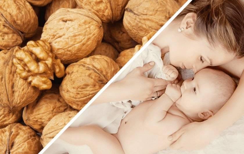 Грецкие орехи при беременности