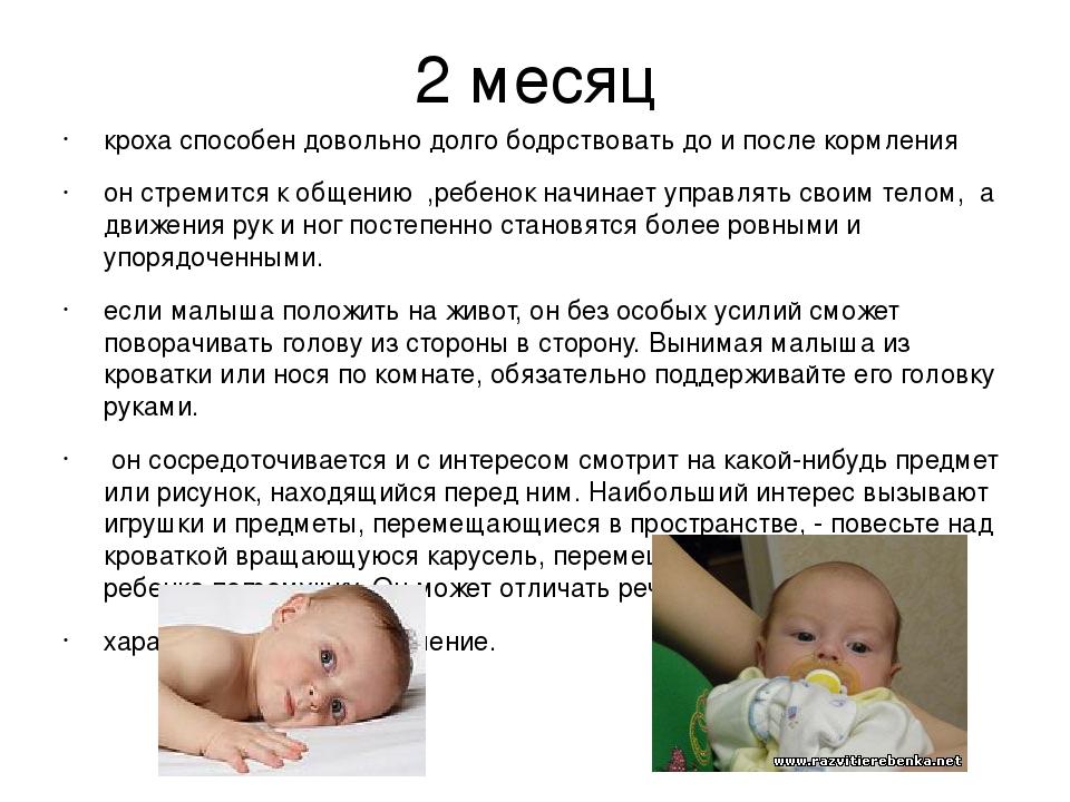 Когда ребенок начинает держать головку самостоятельно - как научить ребенка держать голову быстрей   семья и мама