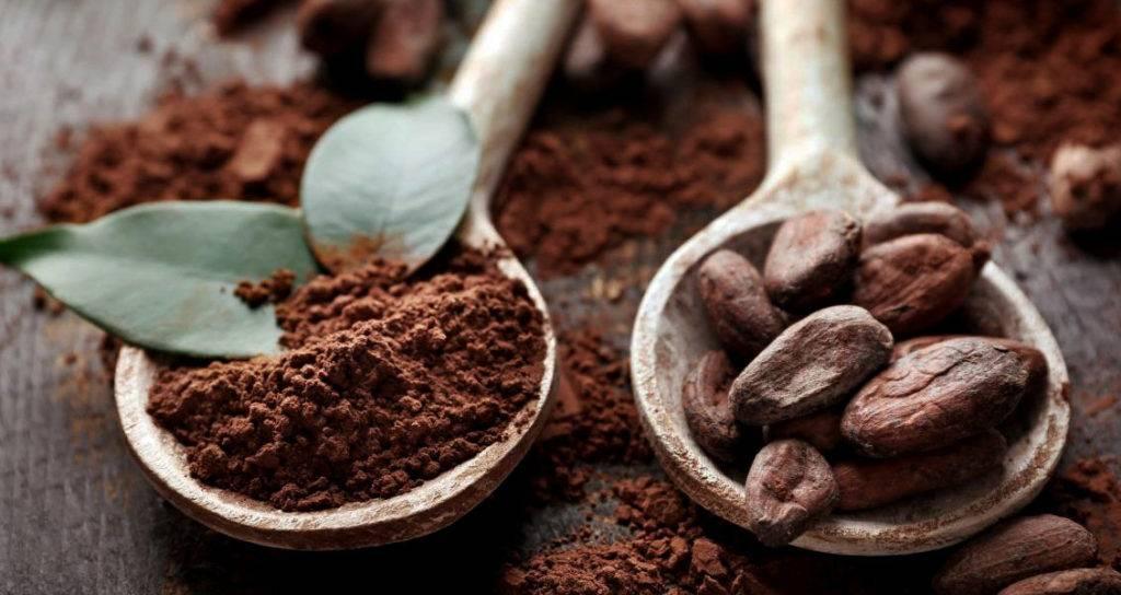 Какао: с какого возраста можно какао детям?