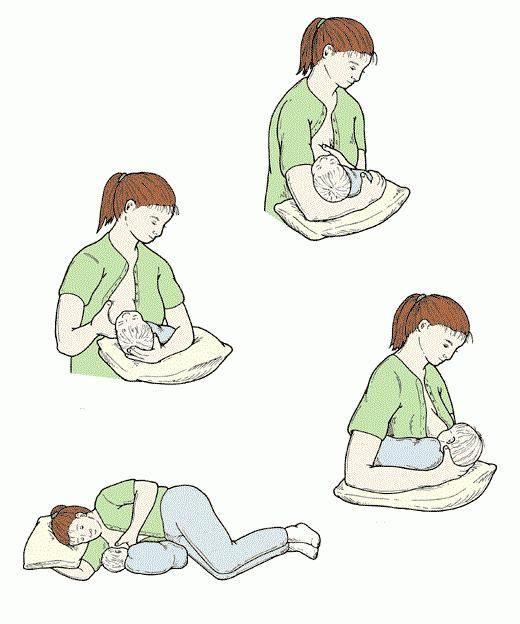 Как прикладывать ребенка к груди: учимся все делать правильно   детская поликлиника