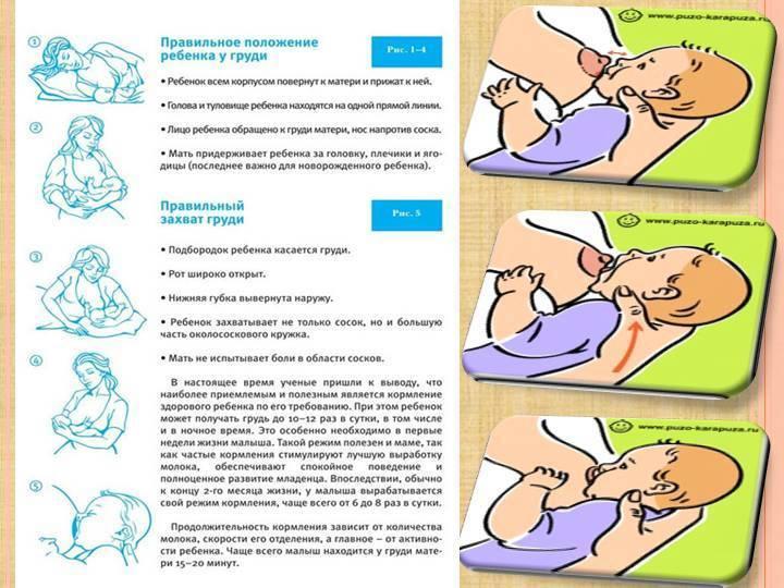 Секреты успешного грудного вскармливания. памятка для мам   | материнство - беременность, роды, питание, воспитание
