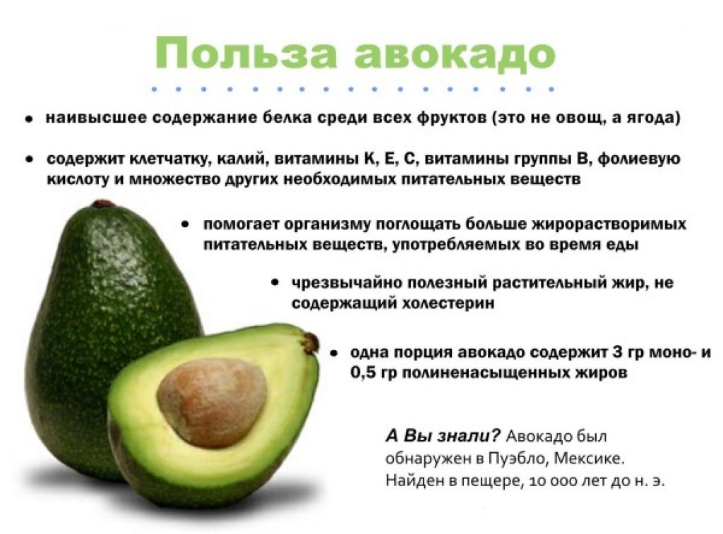 Польза, правила и нормы употребления при ГВ авокадо, с какого месяца