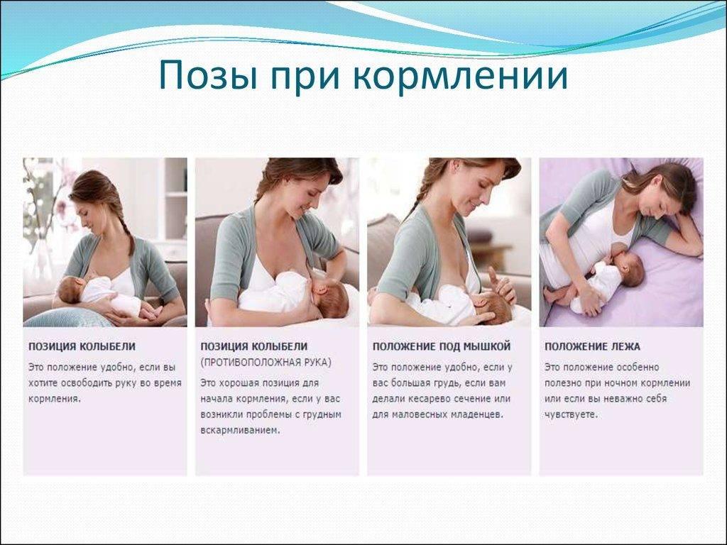 Виды и техника массажа при лактостазе у кормящих мам - proinfospine