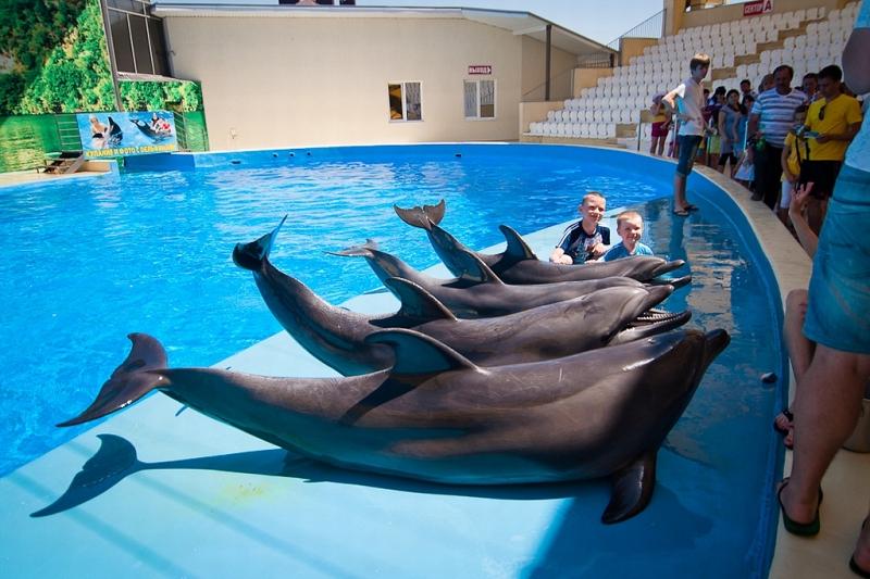 Аквапарки и парки развлечений в геленджике