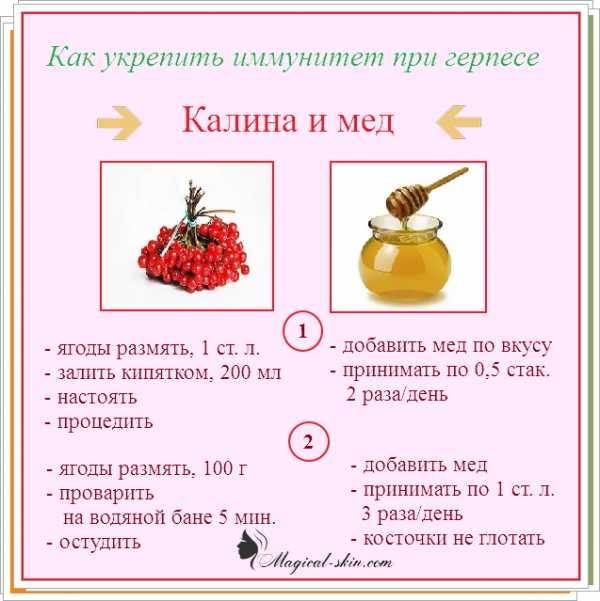 Иммуномодуляторы при беременности в 1, 2 и 3 триместре